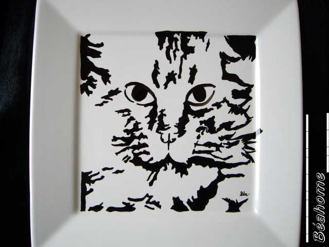 chatnoirassiettecarr.jpg